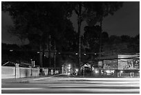 Traffic light trails and tall trees next to Van Hoa Park. Ho Chi Minh City, Vietnam (black and white)