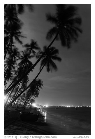 Beach at night with palm trees and coracle boat. Mui Ne, Vietnam (black and white)