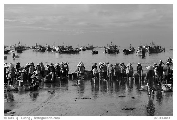 Crowds gather on wet beach for freshly caught seafood. Mui Ne, Vietnam (black and white)