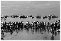 Crowds gather on wet beach for freshly caught seafood. Mui Ne, Vietnam ( black and white)