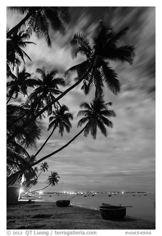 Palm-tree lined beach and coracle boats at night. Mui Ne, Vietnam (black and white)