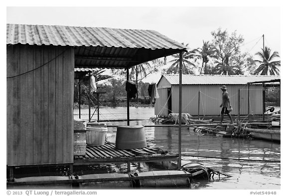 Man and dog walking across houseboats. My Tho, Vietnam (black and white)