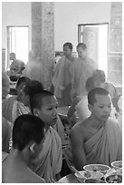 Theravada monks in dining room, Hang Pagoda. Tra Vinh, Vietnam ( black and white)