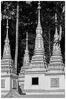 Stupas, Ang Pagoda. Tra Vinh, Vietnam ( black and white)