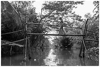 Woman traversing monkey bridge. Can Tho, Vietnam ( black and white)