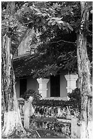 Tropical trees and historic house, Con Son. Con Dao Islands, Vietnam ( black and white)