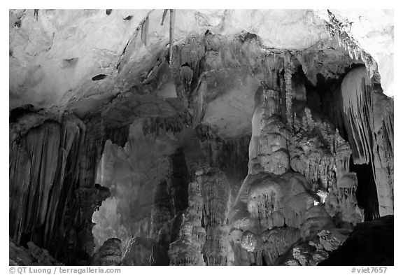 Illuminated cave formations, upper cave, Phong Nha Cave. Vietnam (black and white)