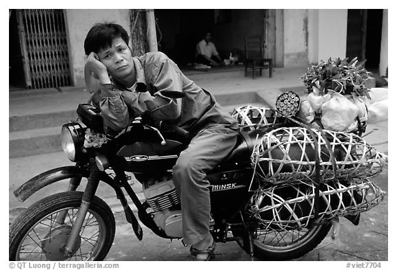 Man on a Russian-made Minsk loaded with live pigs. Northest Vietnam (black and white)