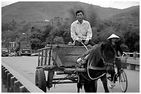 Horse carriage, Cao Bang. Northeast Vietnam ( black and white)