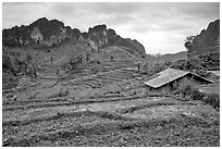 Fields, homes, and peaks, Ma Phuoc Pass area. Northeast Vietnam (black and white)