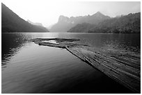 Wood being floated on Ba Be Lake. Northeast Vietnam ( black and white)