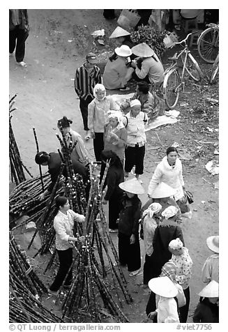 Cane sugar stand seen from above, Cho Ra Market. Northeast Vietnam (black and white)
