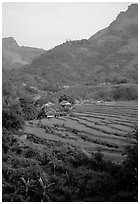 Minority village and rice terraces, near Mai Chau. Northwest Vietnam ( black and white)