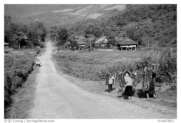Family carrying logs walking towards their village, between Tuan Giao and Lai Chau. Northwest Vietnam (black and white)