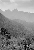 Forests and peaks in the Tram Ton Pass area. Sapa, Vietnam (black and white)