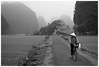 Bicyclist on a dry levee. Ninh Binh,  Vietnam (black and white)