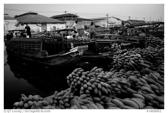 Boats bring loads of produce from the Delta on the Saigon arroyo. Cholon, Ho Chi Minh City, Vietnam (black and white)