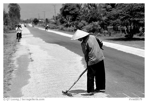 Rice being dried on sides of road. Nobody seems disturbed by the occasional truck. Mekong Delta, Vietnam (black and white)