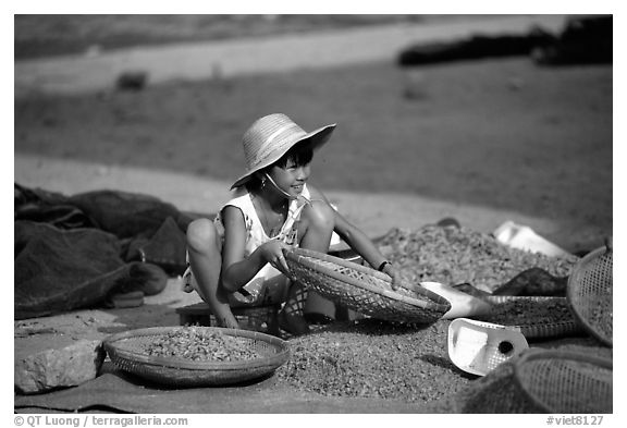 Girl sorting dried shrimp. Ha Tien, Vietnam (black and white)