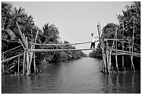 Bamboo bridge (called monkey bridge) near Phung Hiep. Can Tho, Vietnam (black and white)