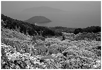 Hai Van (sea of clouds) pass marks the climatic limits of the South, between Da Nang and Hue. Vietnam (black and white)