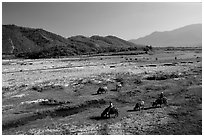 Field close to Lao border, only 50 miles from the coast, Nam Dong. Vietnam (black and white)