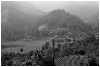 Morning fog on terraced rice fields and village. Sapa, Vietnam ( black and white)