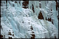 Wide frozen waterfall called Weeping Wall in early season. Banff National Park, Canadian Rockies, Alberta, Canada