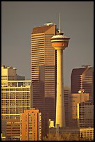 Calgary tower and skyline, late afternoon. Calgary, Alberta, Canada (color)