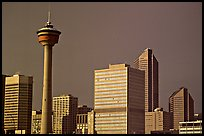 Calgary tower and skyline, late afternoon. Calgary, Alberta, Canada ( color)