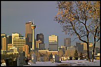 Calgary skyline seen from the cemetery in winter. Calgary, Alberta, Canada