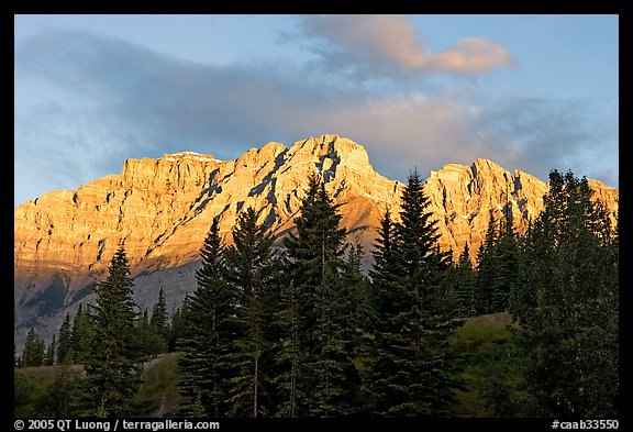 Peaks and conifers near Two Jack Lake, sunrise. Banff National Park, Canadian Rockies, Alberta, Canada (color)