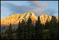Peaks and conifers near Two Jack Lake, sunrise. Banff National Park, Canadian Rockies, Alberta, Canada