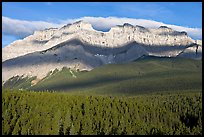 Conifer forest and limestone peaks near Lake Minnewanka, morning. Banff National Park, Canadian Rockies, Alberta, Canada