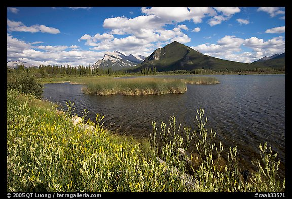 Mt Rundle and second Vermillion lake, afternoon. Banff National Park, Canadian Rockies, Alberta, Canada (color)