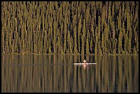 Rower on Lake Louise with forest reflection, early morning. Banff National Park, Canadian Rockies, Alberta, Canada (color)
