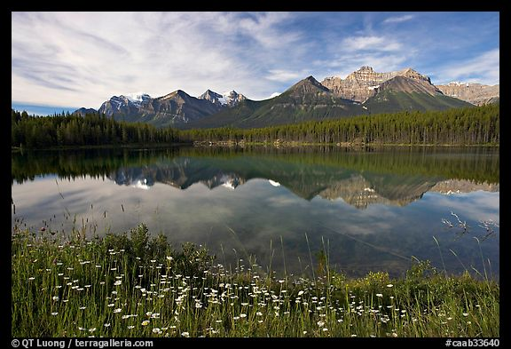 Herbert Lake and the Bow range, morning. Banff National Park, Canadian Rockies, Alberta, Canada