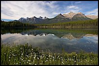 Herbert Lake and the Bow range, morning. Banff National Park, Canadian Rockies, Alberta, Canada (color)