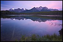 Bow range reflected in Herbert Lake, dawn. Banff National Park, Canadian Rockies, Alberta, Canada