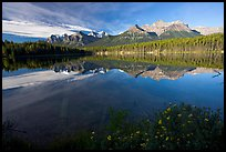 Bow range reflected in Herbert Lake, early morning. Banff National Park, Canadian Rockies, Alberta, Canada