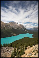 Peyto Lake, turquoise-colored by glacial flour, mid-day. Banff National Park, Canadian Rockies, Alberta, Canada