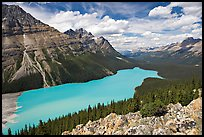 Peyto Lake, with waters colored turquoise by glacial sediments, mid-day. Banff National Park, Canadian Rockies, Alberta, Canada (color)