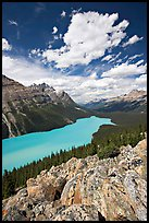 Turquoise Peyto Lake. Banff National Park, Canadian Rockies, Alberta, Canada (color)