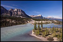 Saskatchevan River. Banff National Park, Canadian Rockies, Alberta, Canada