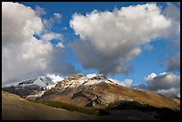 Peak and cloud near the Columbia Icefield,  early morning. Jasper National Park, Canadian Rockies, Alberta, Canada ( color)