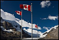 Canadian flags at the Icefieds Center. Jasper National Park, Canadian Rockies, Alberta, Canada