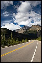 Curved Highway, Icefields Parway. Jasper National Park, Canadian Rockies, Alberta, Canada ( color)