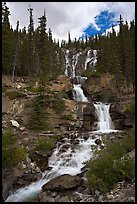 Multi-tiered Tangle Falls. Jasper National Park, Canadian Rockies, Alberta, Canada ( color)