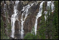Tangle Falls and trees. Jasper National Park, Canadian Rockies, Alberta, Canada