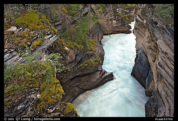 Canyon at the base of Athabasca Falls. Jasper National Park, Canadian Rockies, Alberta, Canada